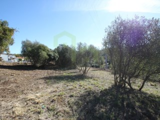 Rustic land with 7874m2, near the beach of Ribeira D'ilhas, inserted in the urban area, according to the PDM. |