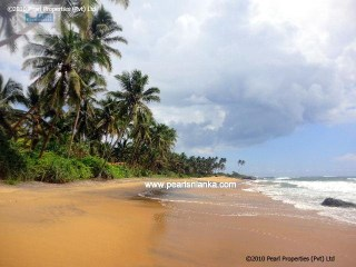 BEACH BUILDING PLOT BETWEEN HIKKADUWA & GALLE/81 PERCHES/SQ.M 2025 |