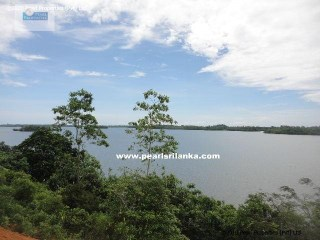 Building Plot on Koggala Lake (Rukandaluwa) Estate /Koggala (Plot 6) |