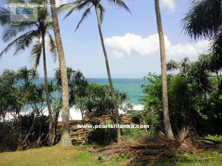 Extraordinarily Beautifull Beach Property/Horse Shoe Bay(Hiriketiya Bay) |