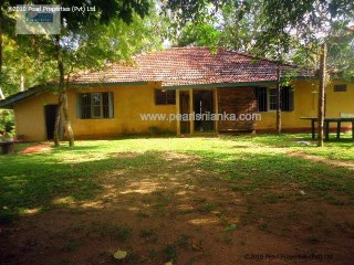 Country Estate › Galle |