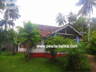 Antique House with 7 Bedroom/ 1 acre ( Sq.m 4000) |