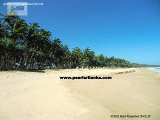 Empty Land/ Beach Property  |