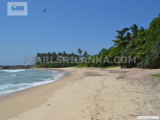 DICKWELLA /BEACH FRONT/ 2 BEDROOM BUNGALOW/ 13 PERCHES (Sq.m 329)  |