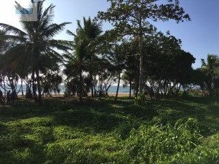 Beach Front Land/Building Plot (83 perches/sq.m 2075) |