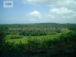 GALLE AREA INLAND WITH SEA VIEW / HILL TOP LAND 21 ACRES ( SQ.M 84000) |