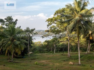 Building Plot for Hotel or multiply villas on Koggala Lake (Rukandaluwa) Estate /Koggala (Plot 1) |