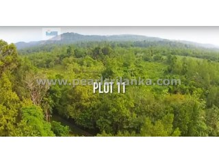 BUILDING PLOT ON KOGGALA LAKE (RUKANDALUWA) ESTATE /KOGGALA (PLOT 11) ( 97.29 PERCHES/SQ.M 2432.25) |