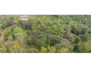 Building Plot on Koggala Lake (Rukandaluwa) Estate /Koggala (Plot 12) ( 98.72 perches/Sq.m 2468) |