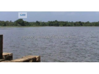 ANURADHAPURA TANK/LAKE PROPERTY/ 15 ACRES/ HOTEL OR VILLA DEVELOPMENT |