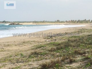 EXTRAORDINARILY BEAUTIFUL BEACH PROPERTY/ EAST COAST/ARUGAM BAY (7 ACRES/SQ.M28000) |