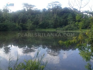 WELIGAMA ELEVATED  LAKE VIEW BUILDING PLOT  |