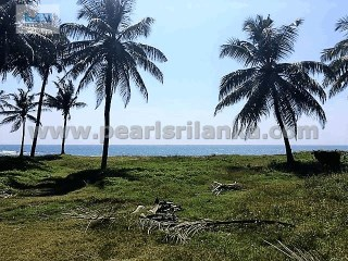 PERFECT BEACH BUILDING PLOT FOR HOTEL DEVELOPMENT/185 PERCHES/SQ.M 4625 |