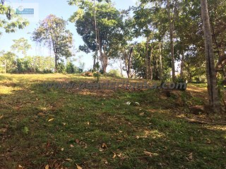 BUILDING PLOT ON KOGGALA LAKE 133 PERCHES /SQ.M 3325 |