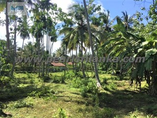 TALPE BUILDING PLOT FOR MAX OF 3 VILLAS/160 PERCHES/SQ.M4000 |