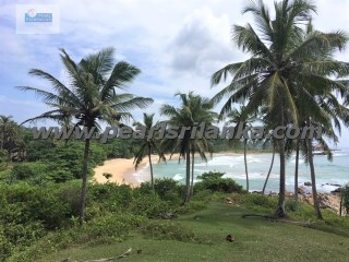 EXTRAORDINARY  BEAUTIFUL 15.46 ACRES/2473.6 PERCHES OF BEACH PLOT/ESTATE FOR BIG HOTEL OR VILLA DEVELOPMENT PROJECT  |