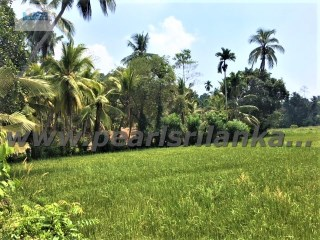 SPECTACULAR 2 HILLTOP PROPERTY WITH VIEWS OVER THE PADDY FIELDS/471 PERCHES(SQ.M 11911) |