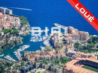 5 bedrooms for rent on the port of Fontvieille - RENTED | 5 Bedrooms