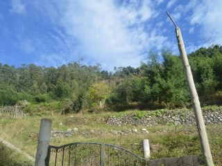 PLOT OF LAND WITH OVER 20 000M2  located RIBEIRA BRAVA FOR SALE. |