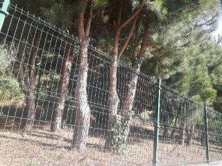 Land for sale in Canhas Ponta do Sol |