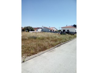 Residential plot › Salvaterra de Magos |
