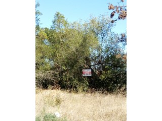 Beautiful land with 744m, Coruche |