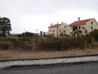 Urban Land › Cascais |