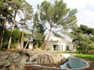 T5 +4 villa with spacious garden with more than 5000 m 2, natural pool, Cascais | 5 Bedrooms