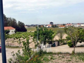 14,250 m2 farm, has inserted housing terrea T3 with pool-isolated Hut-Pinhal Novo | 3 Bedrooms