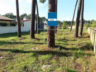 Urbanized land-290m2 Mastic |