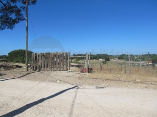 Terreno com 1,6 Ha no Barreiro (Fonte do Feto) - Oportunidade !!! |