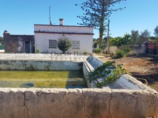 House T3 with 2ha of land near Moncarapacho, Olhão, Algarve.  | 3 Bedrooms | 1WC