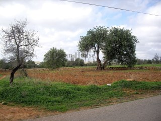Land for construction of Villas in Almancil |
