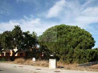 Land › Setúbal |