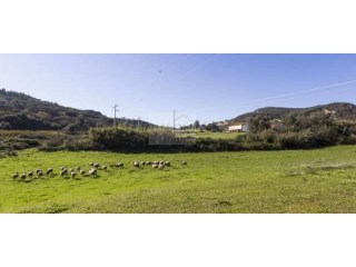 Farm for sale 1 km from Setúbal | Portugal |