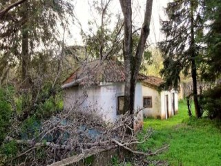 Farm for sale in Setúbal | Portugal |