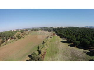 Plot for sale in Azeitão | Portugal | 48,5ha |