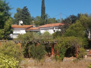 Farm with house for sale in Azeitão | Portugal | 4 Bedrooms