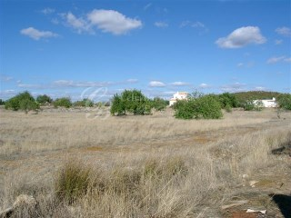 Large plot of Land |