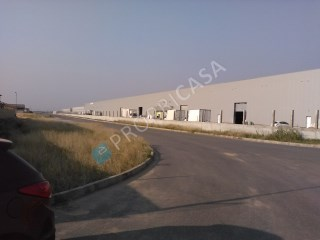 Warehouse › Viana |