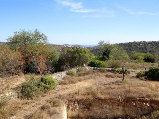 PRICE NEGOTIABLE  Large gently sloping plot in a very quiet location with countryside and sea views. |