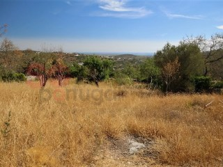 PRICE NEGOTIABLE  Gently sloping plot with ruin.  Countryside and distant sea view. |
