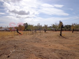 4398 m2 plot in Pereiras de Quarteira. |