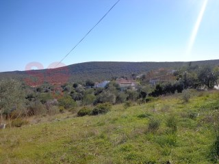 Nice level plot close to Loulé |