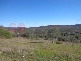 Attractive level plot, 1,500 m2 ten minutes from Loulé. |