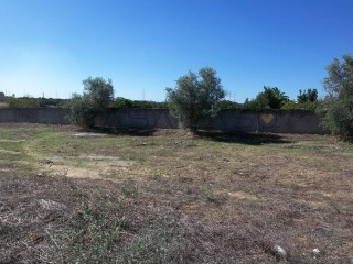 Residential plot › Setúbal |