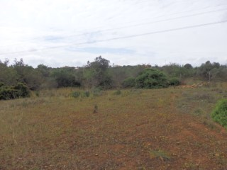 Rustic land with 6.680m2 in Laranjeiro |