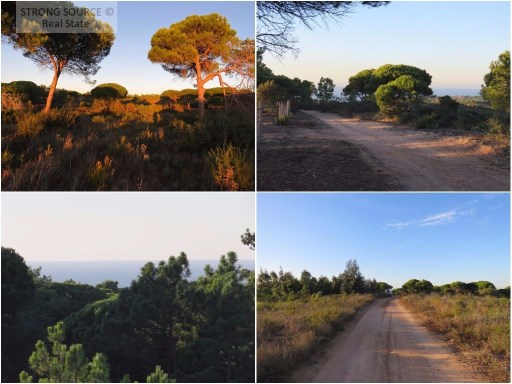 For sale land with 31500 m2, with sea view, between Azóia and Aldeia do Meco, in Azóia, total construction allowed 157 m2 + basement (ground floor for one of the fronts) and possibility to purchase another land next to it, also with sea view, with more 30.000,00 m2 (can build 310 m2 + basement) for a further € 350000.00.