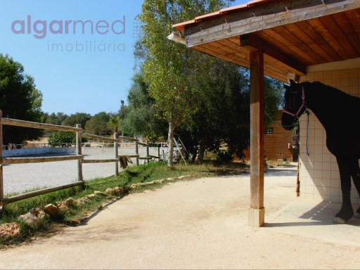 ALGARVE - Mexilhoeira Grande - Amazing 'Quinta' (farm) for sale, with pool, stables, a horse riding arena and gardens | 8 Bedrooms