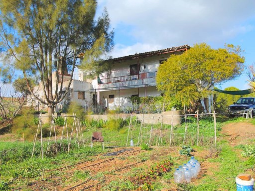 Large plot with 4 apartments and several warehouses in São Brás de Alportel | 4 Bedrooms | 4WC